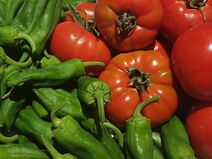 Tomates y pimientos de Gernika